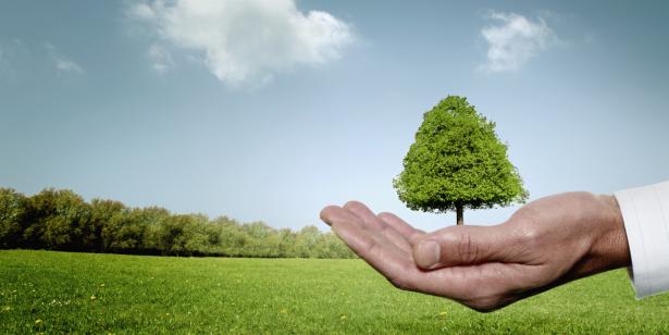 L'AMMC s'inscrit dans l'esprit de la COP22